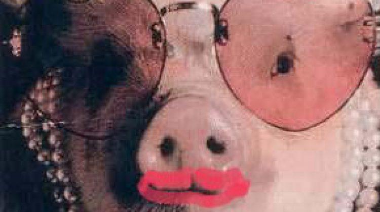 lipstick on a pig.jpg